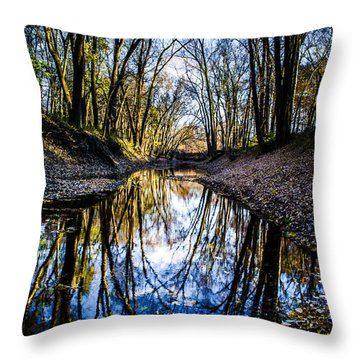 Treasure Of Leaves Throw Pillow
