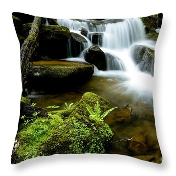 West Virginia Waterfall  Throw Pillow by Thomas R Fletcher