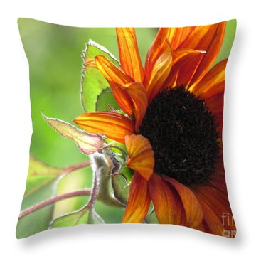 Sunflowers  Throw Pillow by France Laliberte