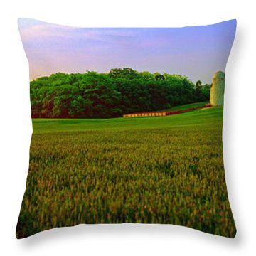 Conley Rd Spring Pasture Oaks And Barn  Throw Pillow