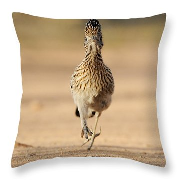 Greater Roadrunner Throw Pillow