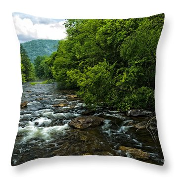 Spring Along Cranberry River Throw Pillow