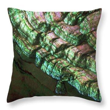 Abalone Throw Pillows