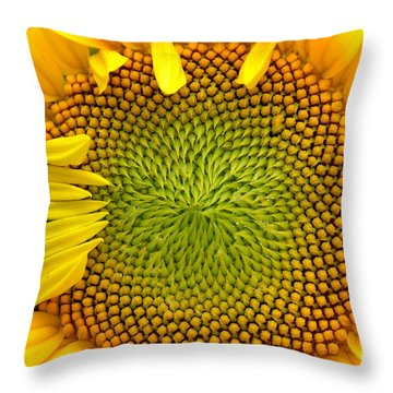 Throw Pillow featuring the photograph 90 Percent by Kenny Glotfelty