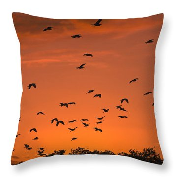 Birds At Sunset Throw Pillow by Sally Weigand