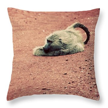 A Baboon On African Road Throw Pillow by Michal Bednarek