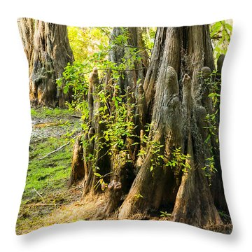 A Bald Cypress Trunk With Its Little Knees - Texas Throw Pillow