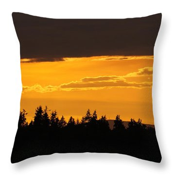 A Band Of Gold Throw Pillow