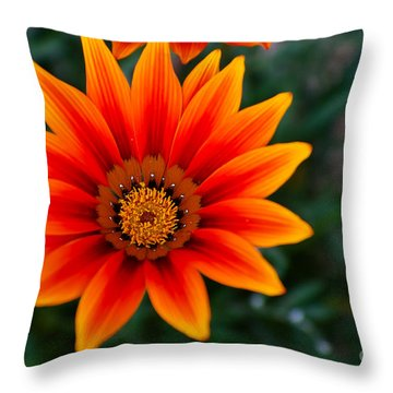 A Beautiful Beginning Throw Pillow by Syed Aqueel