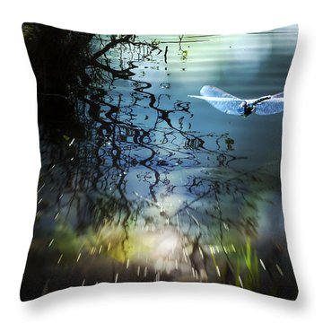 A Beautiful Dream Throw Pillow