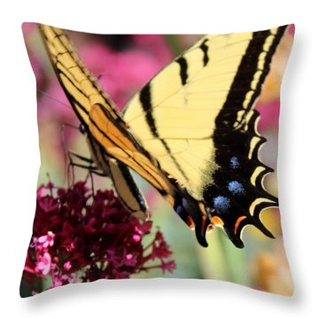 A Beautiful Ending Throw Pillow