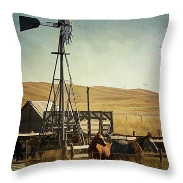 A Beautiful Nebraska Sandhills Farm Throw Pillow by Priscilla Burgers
