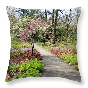 A Beautiful Spring Walk Throw Pillow
