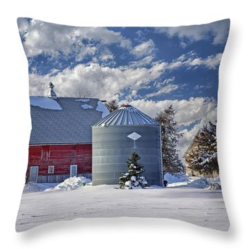 A Beautiful Winter Day Throw Pillow