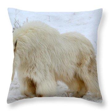 A Beautiful Woman Throw Pillow