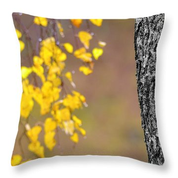 A Birch At The Lake Throw Pillow by Tommytechno Sweden
