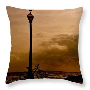 A Bird And A Bike Throw Pillow