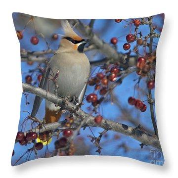 A Bird For Its Crest.. Throw Pillow by Nina Stavlund