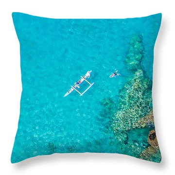A Bird's Eye View Throw Pillow by Denise Bird