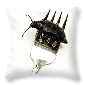 A Bite Of Water Bug Throw Pillow by Amy Cicconi