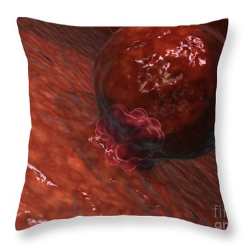 A Blastocyst Begins Implanting Throw Pillow by Stocktrek Images