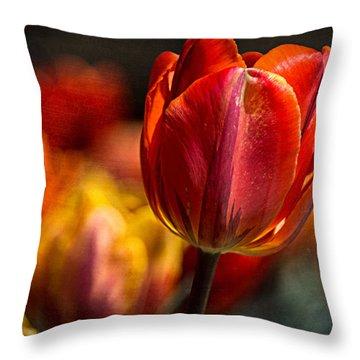 A Blaze Of Color Throw Pillow