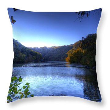 A Blue Lake In The Woods Throw Pillow by Jonny D