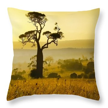 A Boab Sunrise Throw Pillow by Holly Kempe