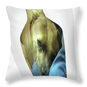A Bottle Of Love Throw Pillow by Renee Trenholm