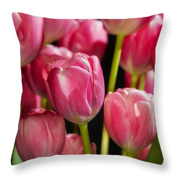 A Bouquet Of Pink Tulips Throw Pillow by Nick  Biemans