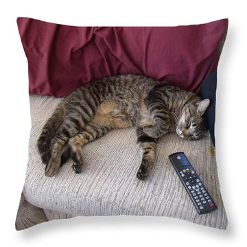 A Boy And His Remote Throw Pillow