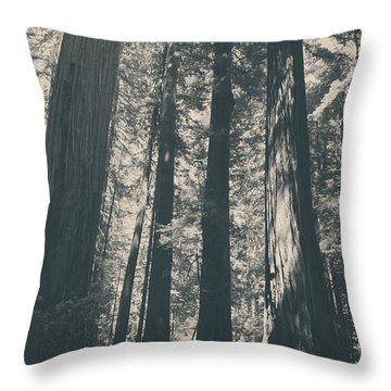 A Breath Of Fresh Air Throw Pillow