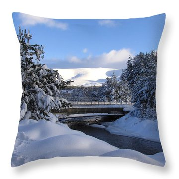 A Bridge In The Snow Throw Pillow