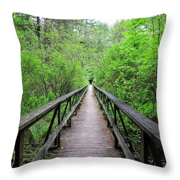 A Bridge To Somewhere Throw Pillow by MTBobbins Photography