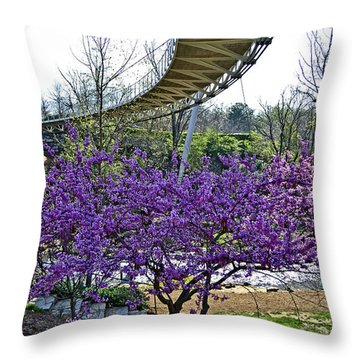 A Bridge To Spring Throw Pillow by Larry Bishop