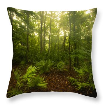 A Bright Morning Throw Pillow by J Riley Johnson
