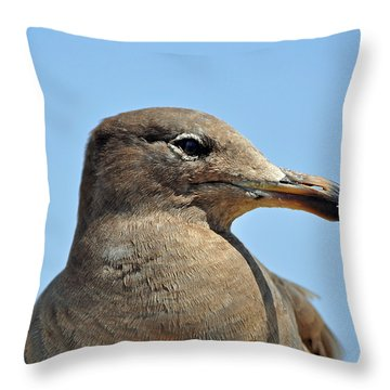 A Brown Gull In Profile Throw Pillow
