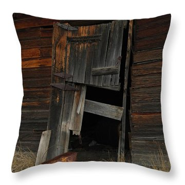 A Bucket And A Door Throw Pillow by Jeff Swan