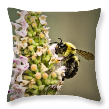 A Bumble Bee Working Throw Pillow