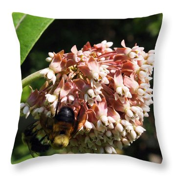 Throw Pillow featuring the photograph A Bumble Bees Feast by Deborah Fay