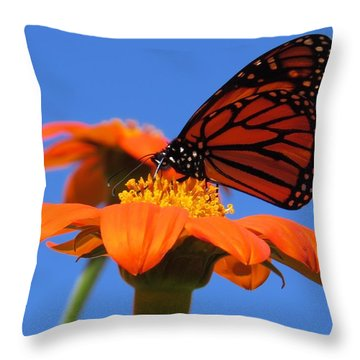 A Butterfly Kiss Throw Pillow by Jeanette Oberholtzer