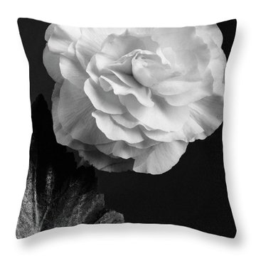 A Camellia Flower Throw Pillow