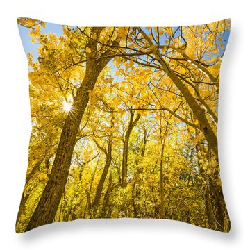 A Canopy Of Aspens At Mcgee Creek In The Eastern Sierras Throw Pillow by Joe Doherty