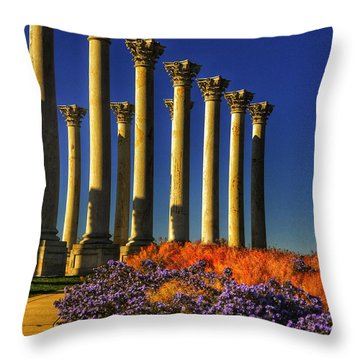 A Capitol Autumn I Throw Pillow