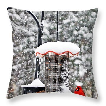 A Cardinal Winter Throw Pillow