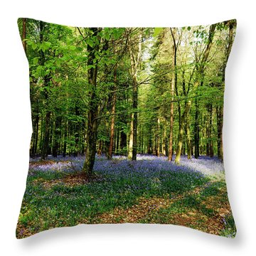 A Carpet Of Colour Throw Pillow by Wendy Wilton