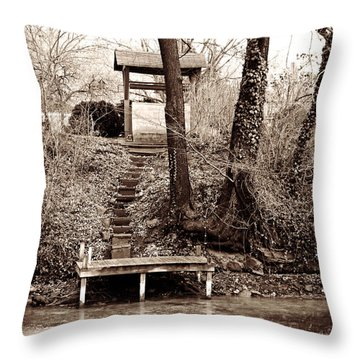 A Certain Sense Of Privacy Throw Pillow