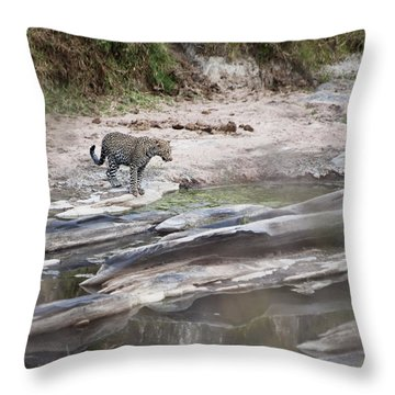 A Cheetah Stands At The Edge Of The Throw Pillow by Diane Levit
