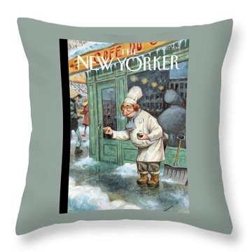 Seasons Throw Pillows