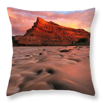 Throw Pillow featuring the photograph A Chocolate Milk River by Ronda Kimbrow